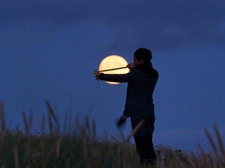 Лунные игры